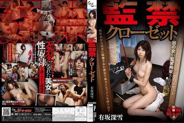 [GVG-983] Confinement Closet – Miyuki Arisaka