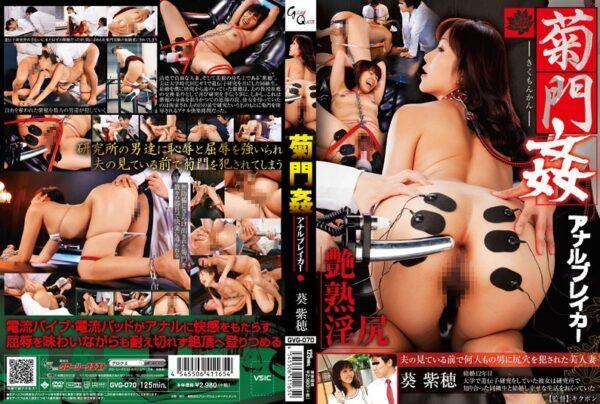 GVG-070 Kiku-monkan Aoi MurasakiMinoru